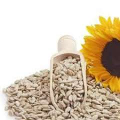 Sunflower Seeds, Org Shelled