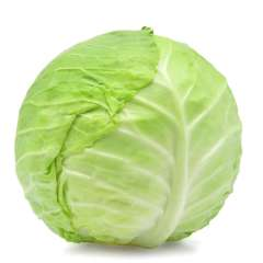 Cabbage, Green ON (or Quebec)