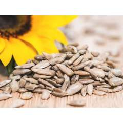 Organic Sunflower Seeds  *GF