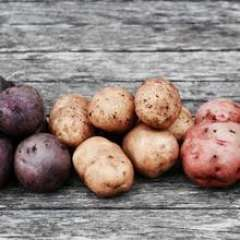 Fresh Acres, Organic Potato ON