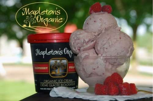 Mapleton Organic Ice Cream *GF